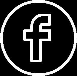 Facebook Albión Electrónica